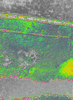 Img_4391_ndvi_color_thumb