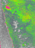 Img_4237_ndvi_color_thumb