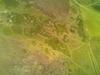 Img2015-07-04-21-08-28_thumb