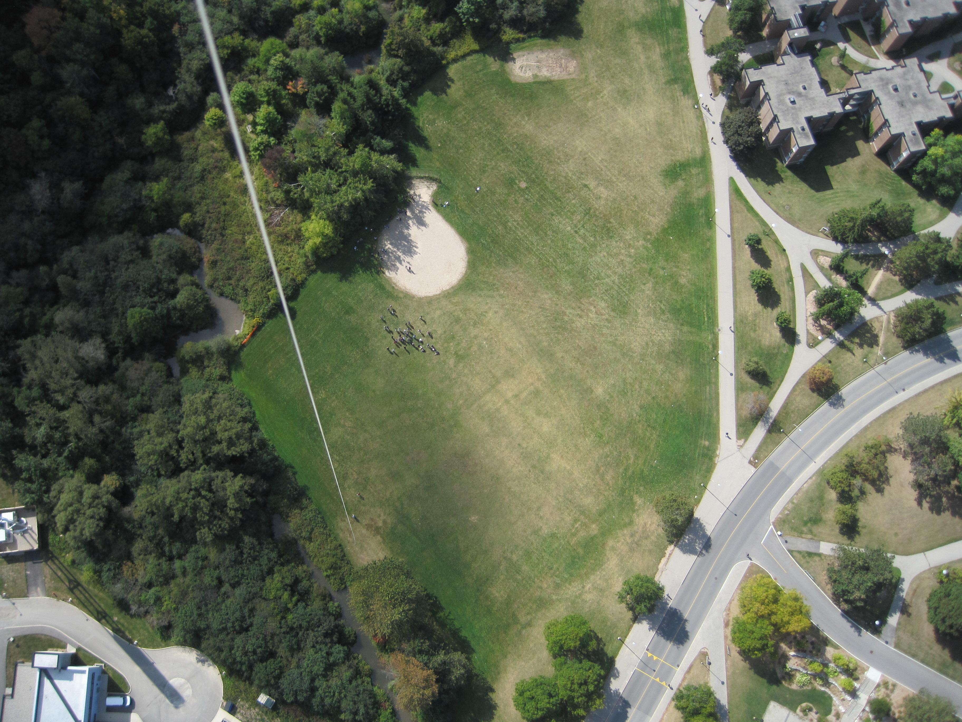 UW Village1 Green Woodlot