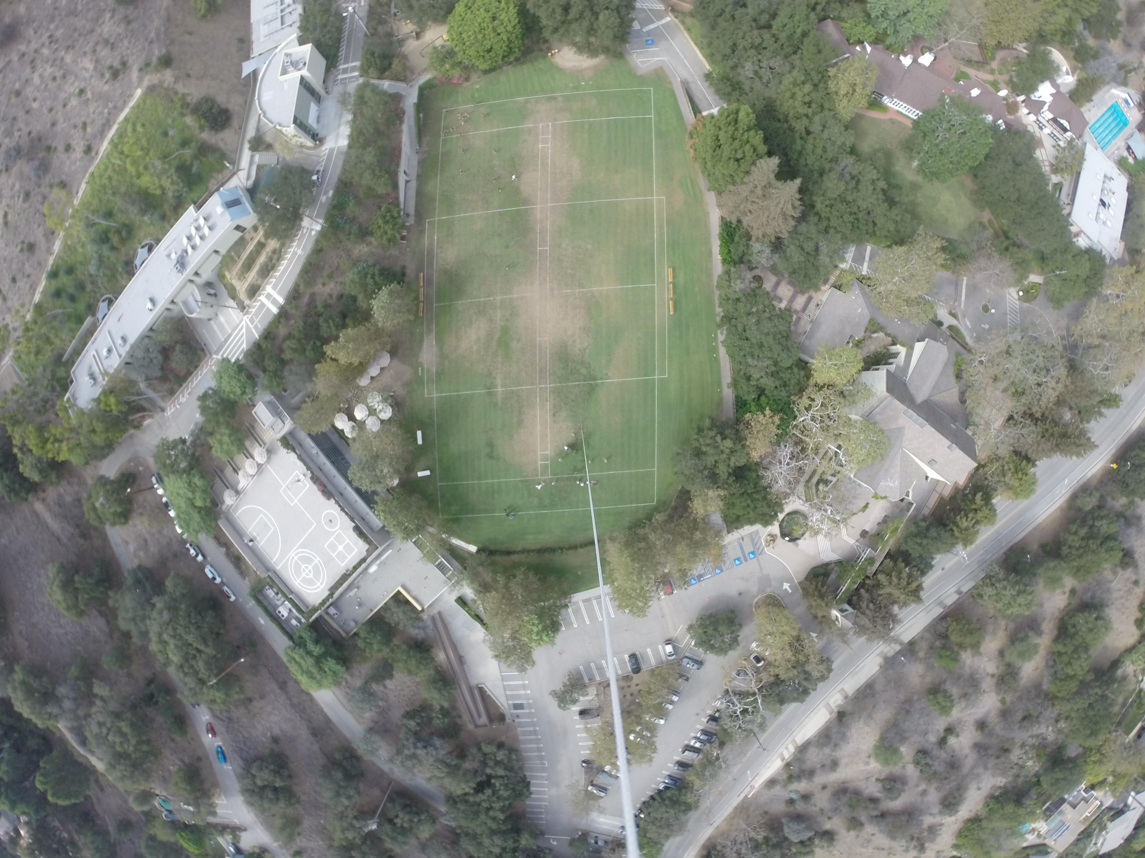 Satellite Image of St.Matthews- Animal Kingdom 5Y