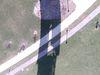 Img_170319_194134_0038_rgb_thumb