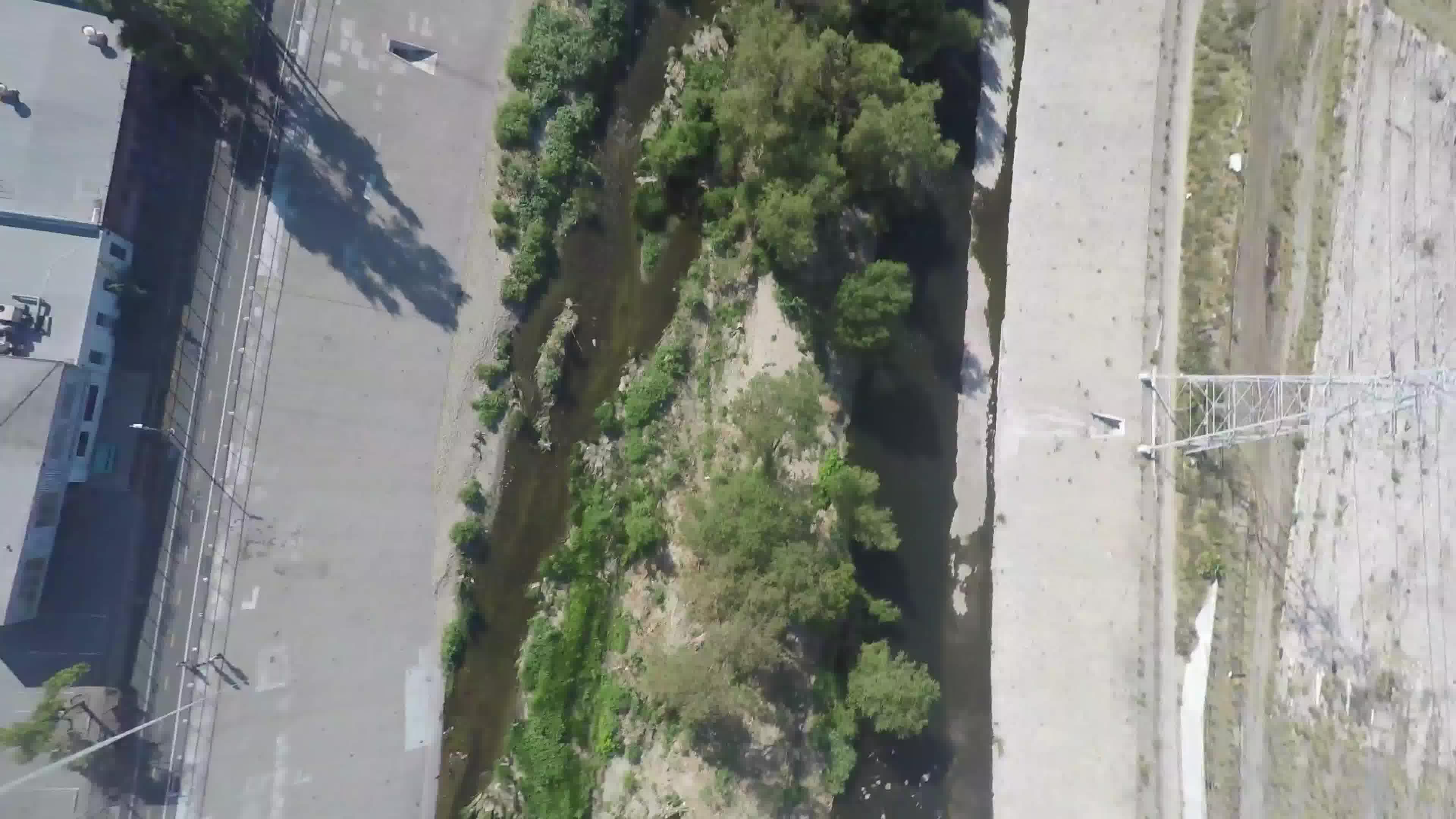 LA River Frogtown Tyler