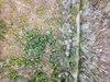 25bb13b3-fb10-42e3-85e2-1e7f72bc4e21_thumb