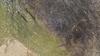 Vlcsnap-2018-12-10-11h56m16s414_thumb