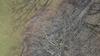 Vlcsnap-2018-12-10-11h58m24s265_thumb