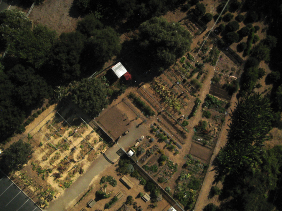 Trinity community gardens balloon mapping 2019
