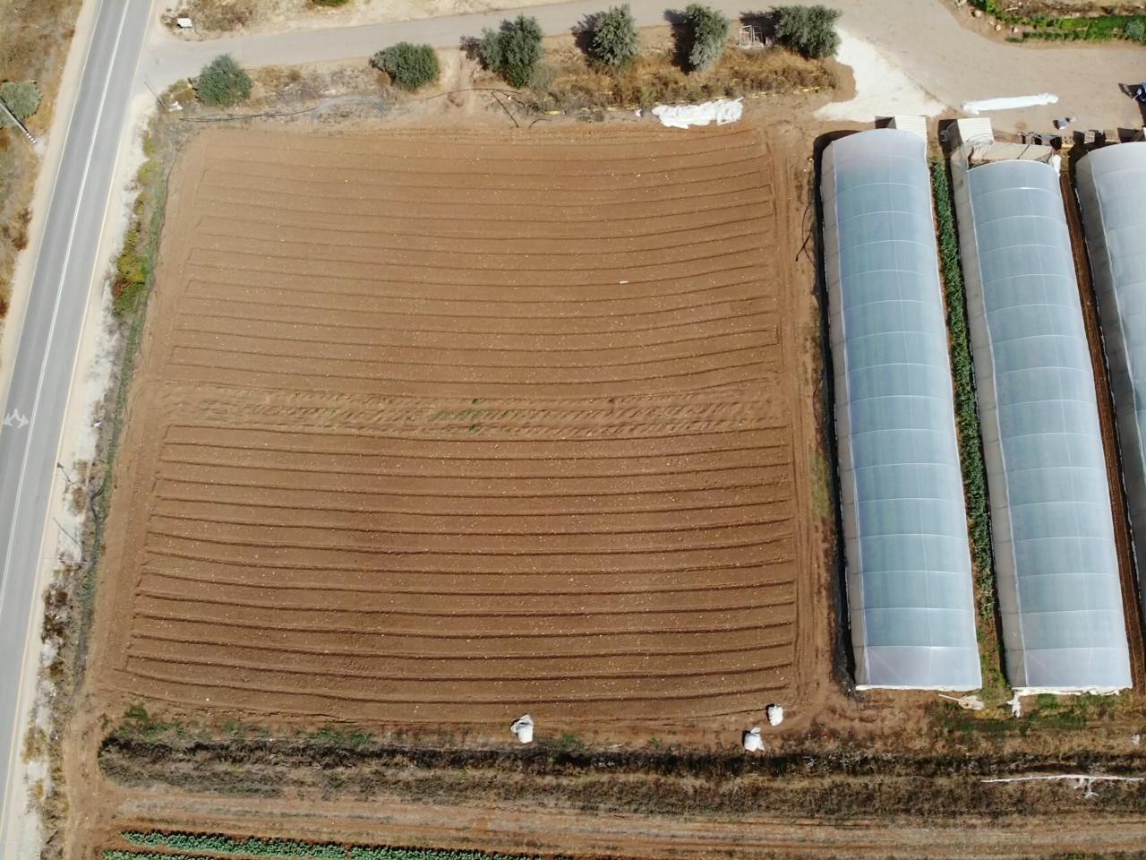 nacham farm