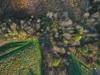 Ovpkap 20111028 85 45 thumb