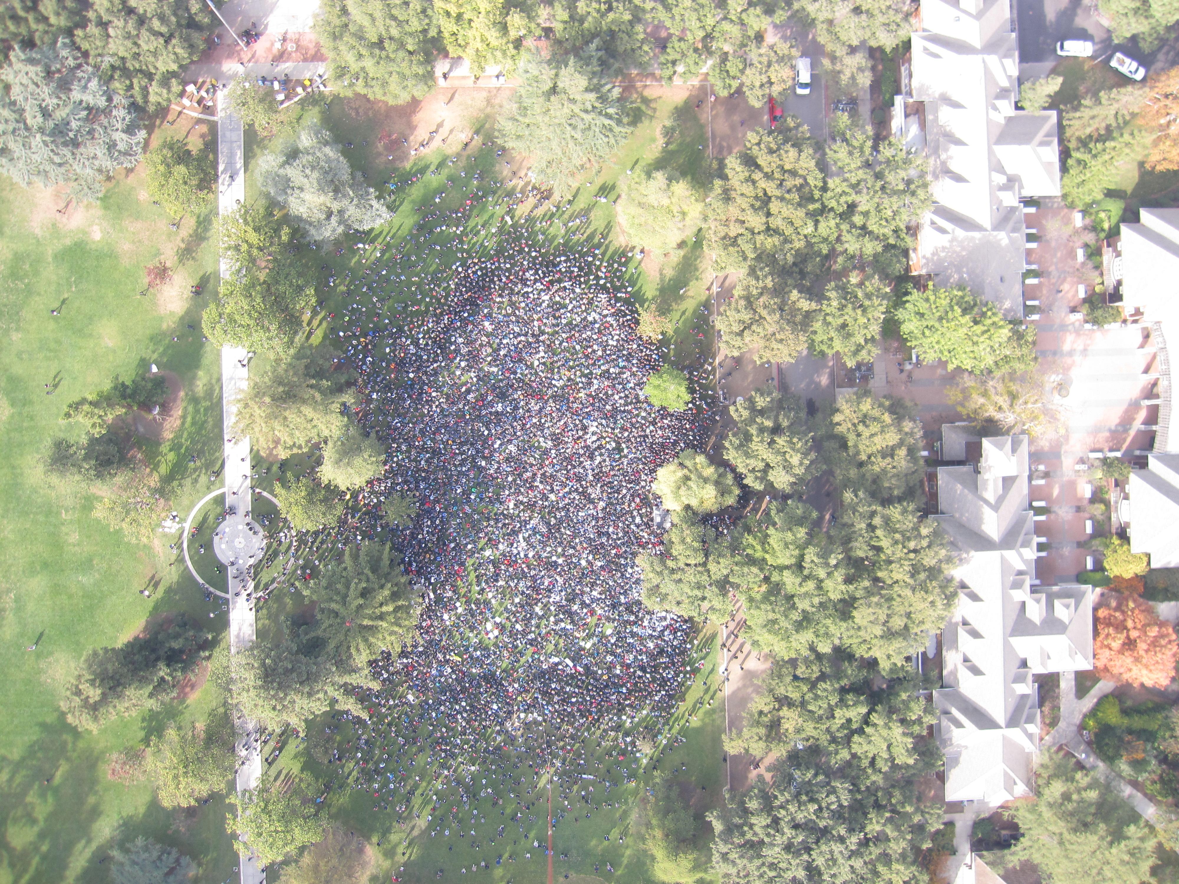 occupyucdavis-nov-21-2011