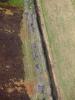 Lemon 20120420 125 21 thumb