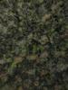 Swampvis-20120505-151-177_thumb