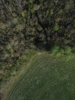 Swampvis-20120505-151-232_thumb