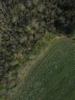 Swampvis-20120505-151-236_thumb