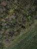 Swampvis-20120505-151-253_thumb