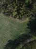 Swampvis-20120505-151-156_thumb
