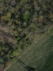 Swampvis-20120505-151-277_thumb
