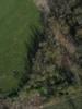 Swampvis-20120505-151-287_thumb