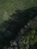 Swampvis-20120505-151-323_thumb