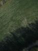 Swampvis-20120505-151-321_thumb