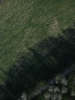Swampvis-20120505-151-317_thumb