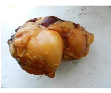 Smoked Marrow Dog Bone - Knuckle Bone