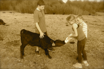 Farm Tours Sunday Afternoons, 1:30