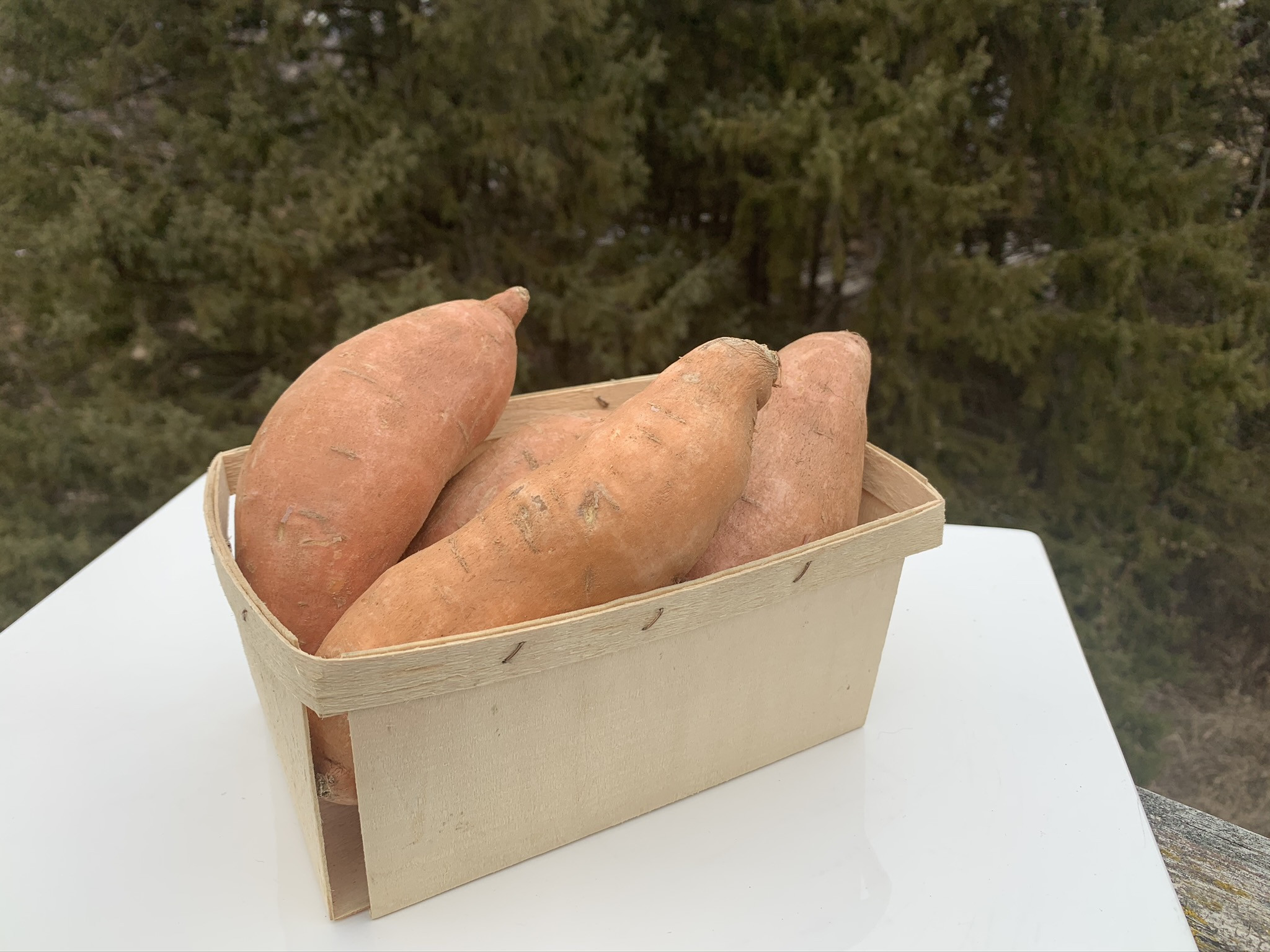 Beuragard Sweet Potato