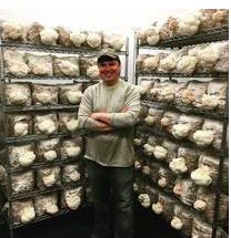 Mushroom Mike