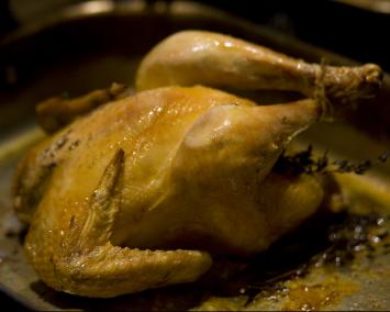 Non-GMO Chicken
