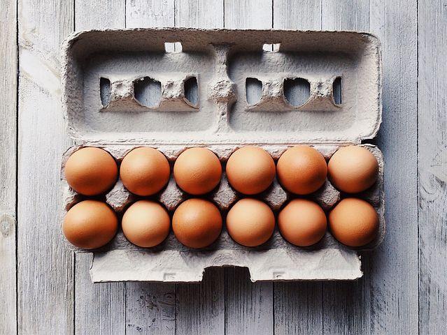 Eggs - L/XL