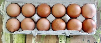 1 Dozen Free-Range Eggs
