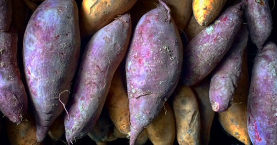 Orange Sweet Potatoes 2lbs