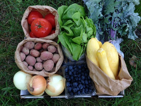Vegetable Bundle Large