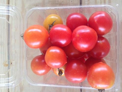 Mixed Cherry Tomato Pint
