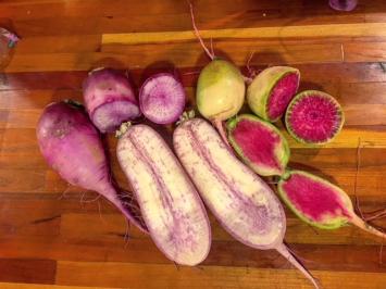 Purple Diakon Radish 2 lbs
