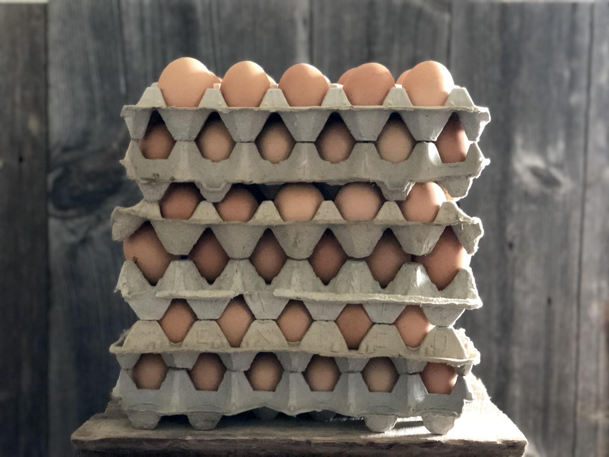 15 Dozen Case Flats- Pastured Soy-Free Chicken Eggs