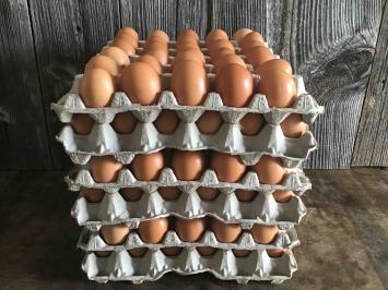Pastured Soy-Free Chicken Eggs, 15 Dozen