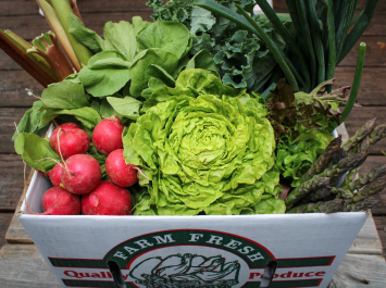Produce Box and Herb Bundle