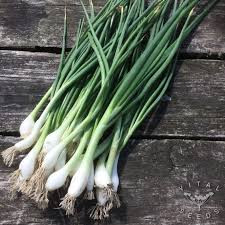Spring Onions - White