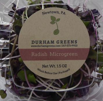 Durham Greens Radish Microgreens