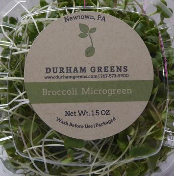 Durham Greens Broccoli Microgreens
