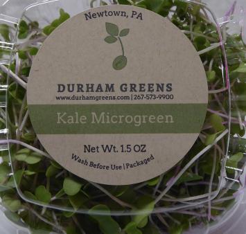 Durham Greens Kale Microgreens