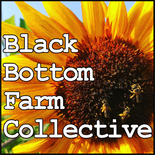 Black Bottom Farm Collective LLC Logo