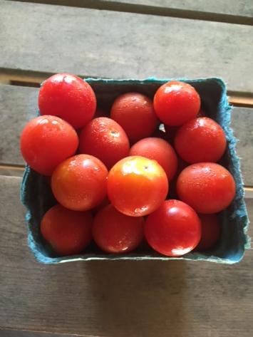 Organic Red Sakura Cherry Tomatoes