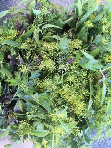 Fresh Herb Bouquet (organic practices)