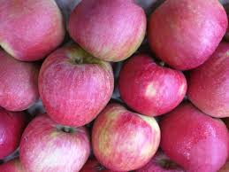 Winesap Apples (large)