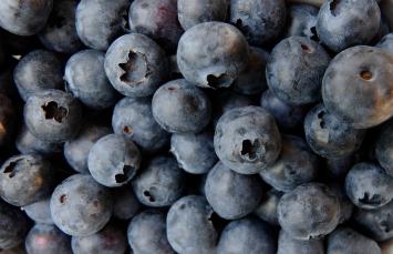 Organic Blueberries, Frozen