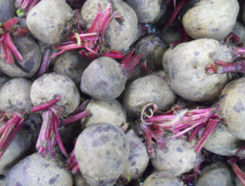Large Beets with Tops