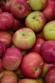 Apple - Macintosh